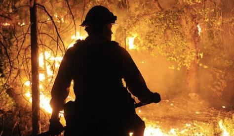 incendie-de-fore%cc%82t