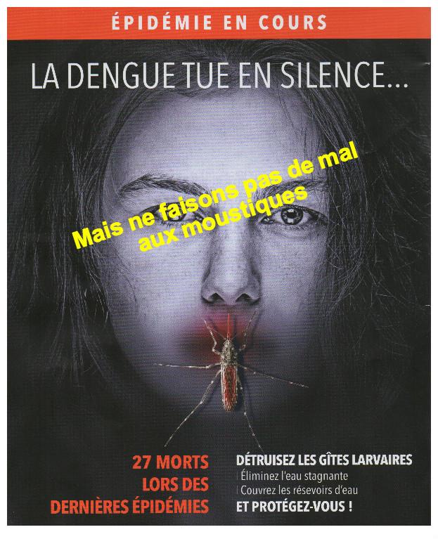 8e VICTIME DE LA DENGUE – A QUAND LA NEUVIÈME ? MÊME LE FIGARO EN PARLE …