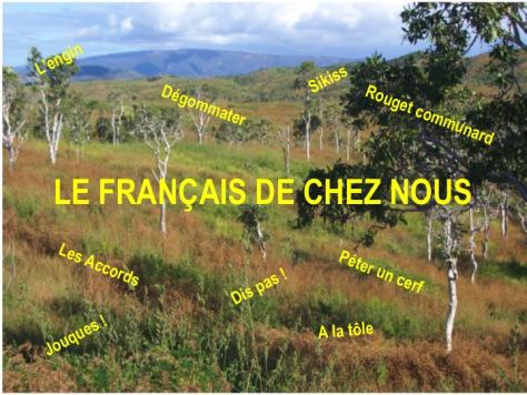 LE FRANÇAIS DE CHEZ NOUS : LE COMMUNARD
